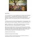 """Pressemitteilung für Ausstellung """"Summer in the City"""" 2012"""